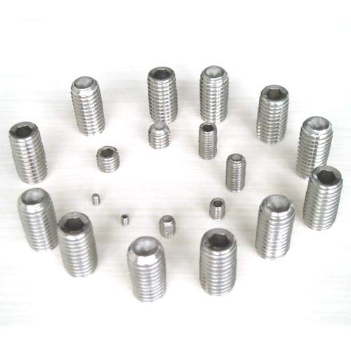 Stainless Steel Grab Screws